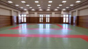 Judo, Kendo on tatami